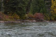 Jasper River 4