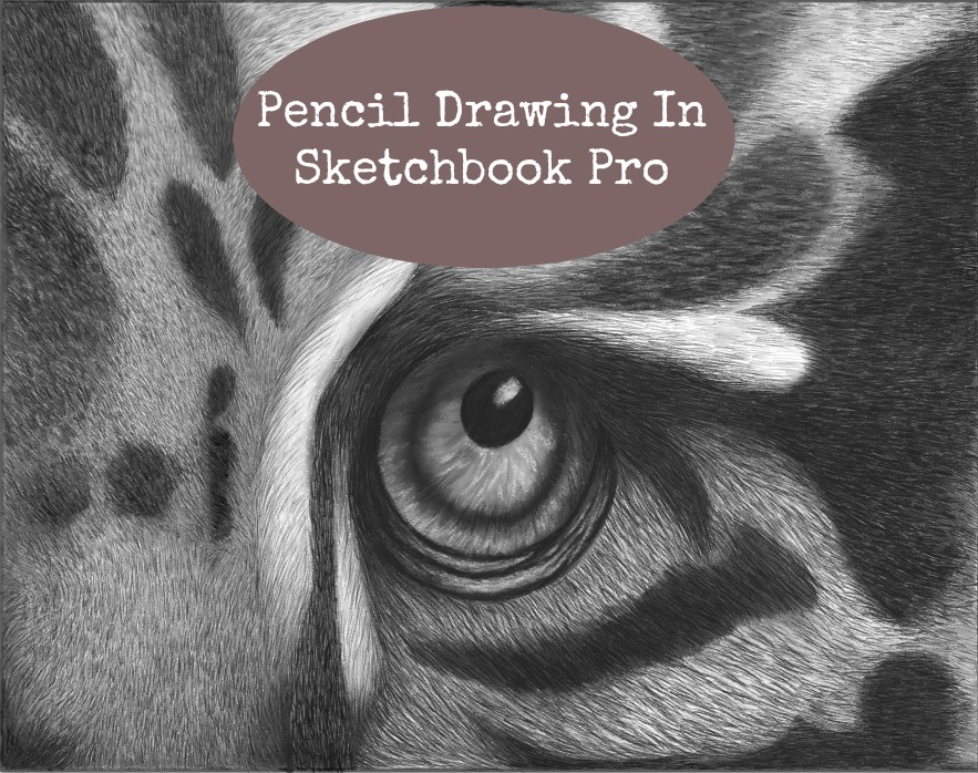 Using Pencils In Sketchbook Pro
