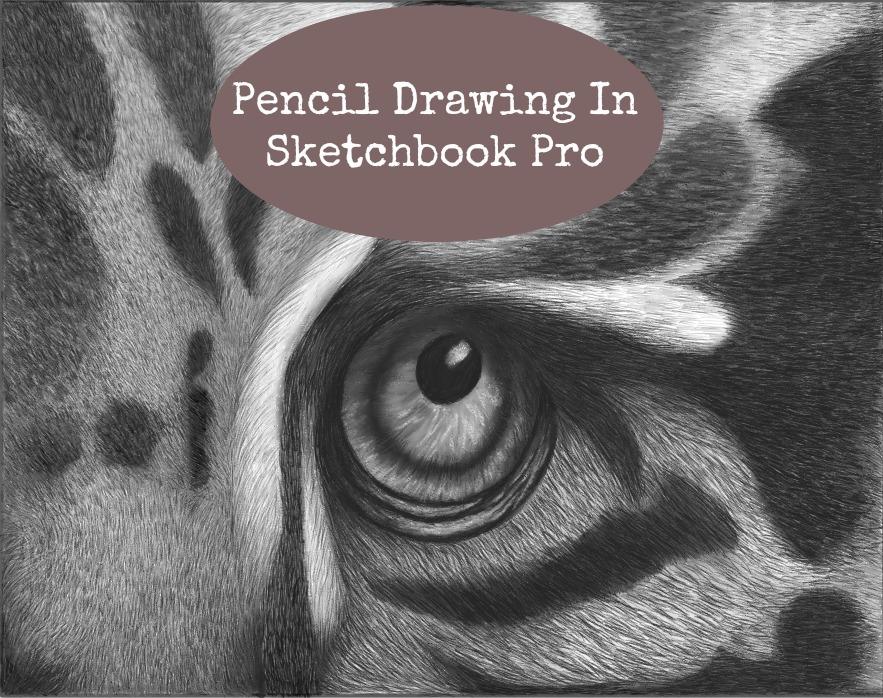 Using Pencils In SketchbookPro